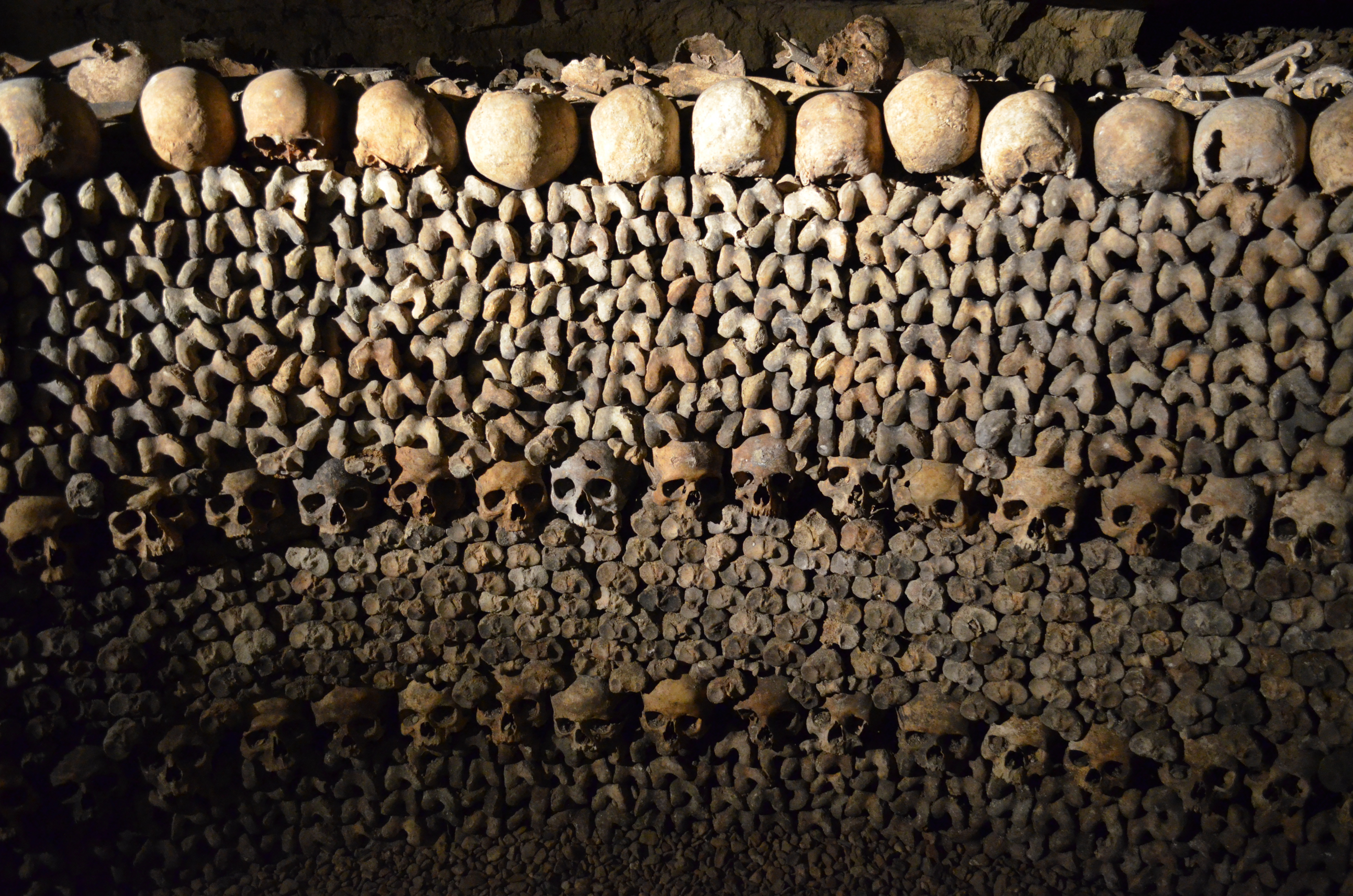 get your guide paris catacombs