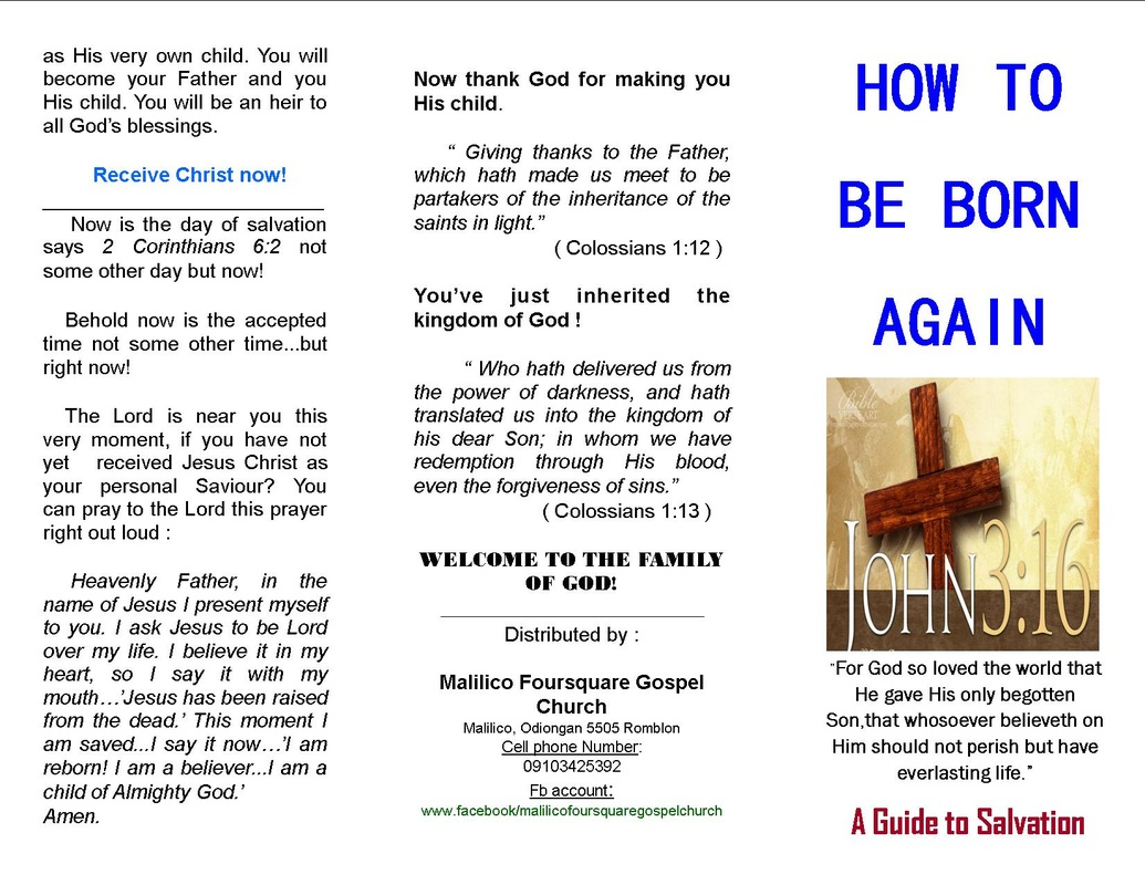 joy of the gospel study and action guide