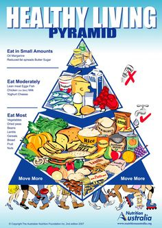australian guide to healthy eating food model