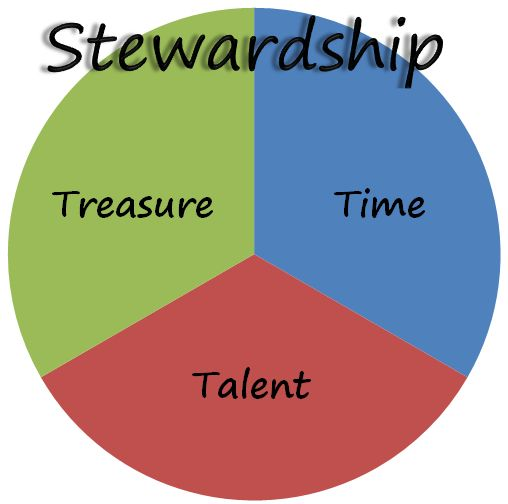 counsels on stewardship study guide