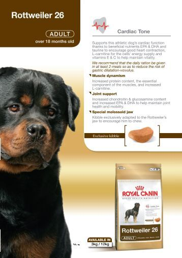 royal canin giant puppy feeding guide