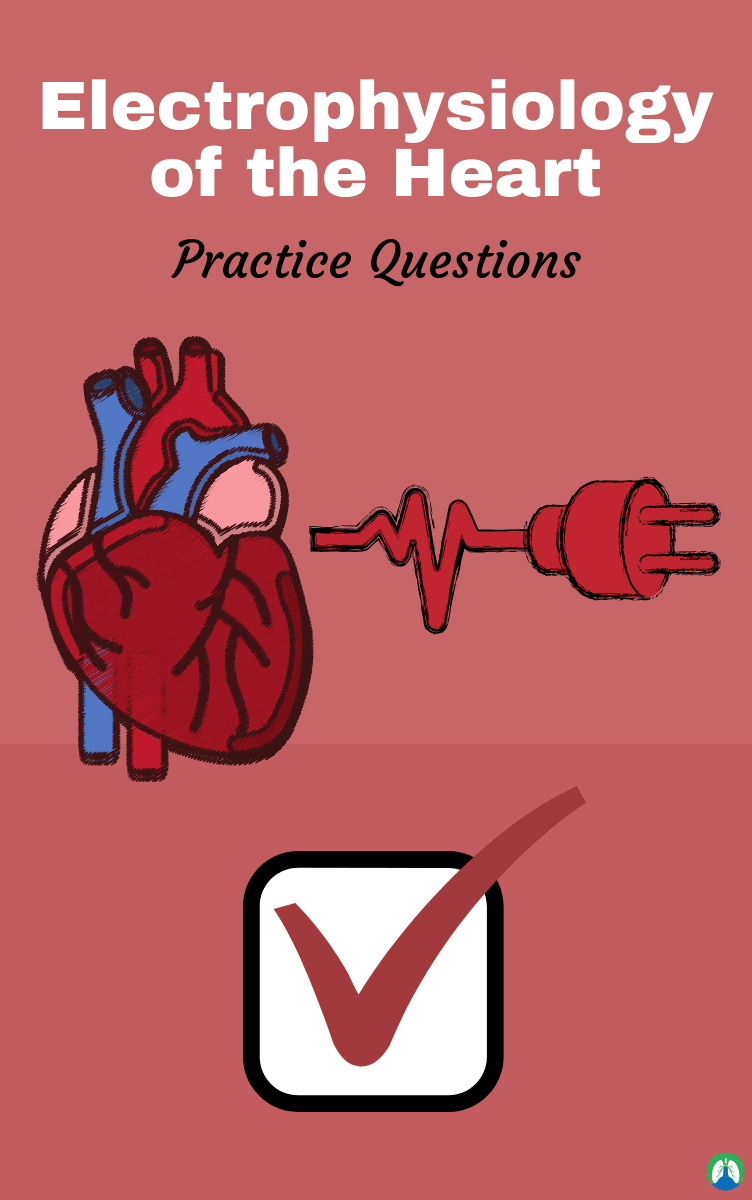 renovation of the heart study guide