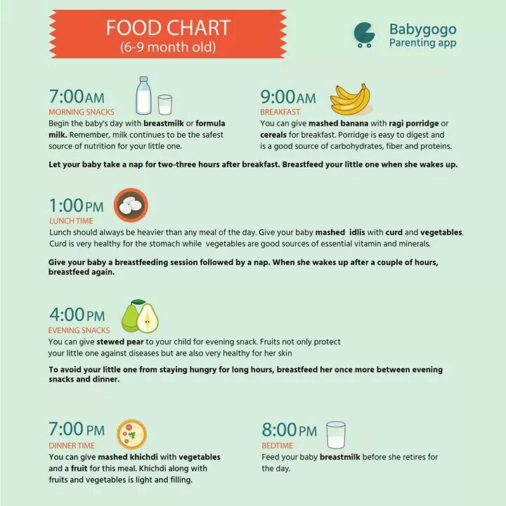 feeding guide for 5 month old baby