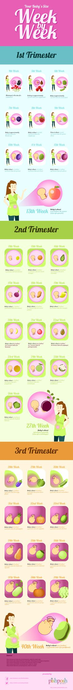 mama natural week by week guide to pregnancy and childbirth